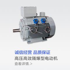 高压高效隔爆型电动机-电气商城-京博云商