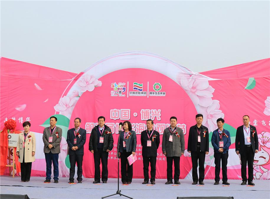 公司海棠节活动